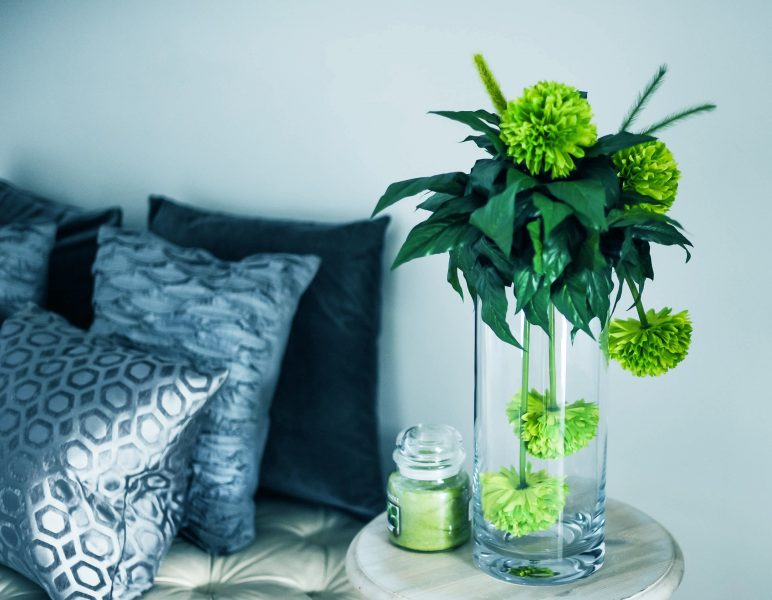 plants-in-vase
